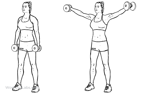 https://workoutlabs.com/exercise-guide/dumbbell-lateral-raise-power-partials/